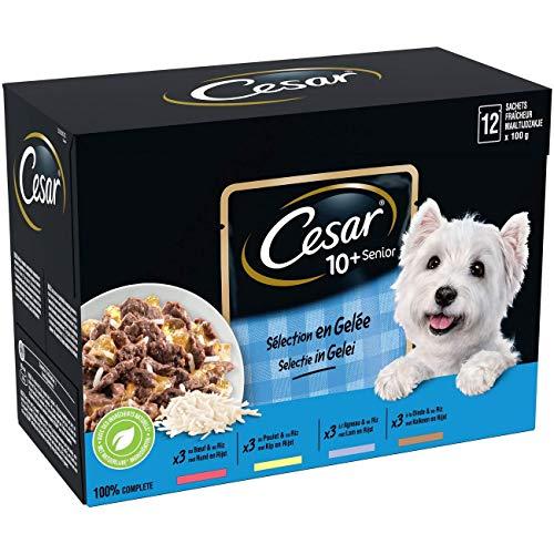 CESAR Sachets fraîcheur en sauce pour chien senior aux 4 saveurs, 48 sachets repas de 100g