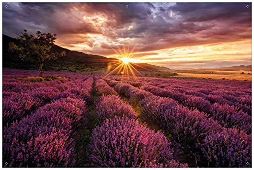 Wallario Garten-Poster Outdoor-Poster - Lavendelfeld bei Sonnenuntergang - Sonnenstrahlen in Premiumqualität, Größe: 61 x 91,5 cm, für den Außeneinsatz geeignet