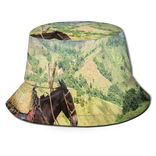 Unisex Summer Fisherman Cap,A Donkey with Lush Green Hills In Rural Colombia Mountains Landscape Illustration,Travel Beach Outdoor Sun Hat