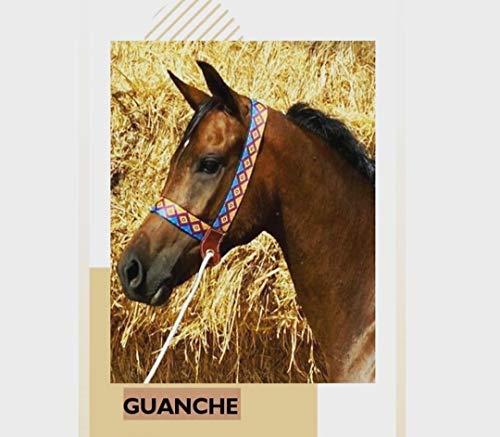 jaquima para caballo, cabezada, cabestro, cabezal para caballo. DISEÑO UNICO. fabricado en ESPAÑA.