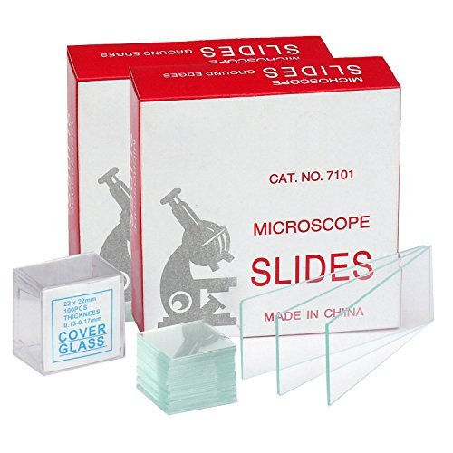 AmScope BS-100P-100S-22-A Microscope Slides, 100 Blank Slides with 100 Cover Glass Coverslips by LabStock