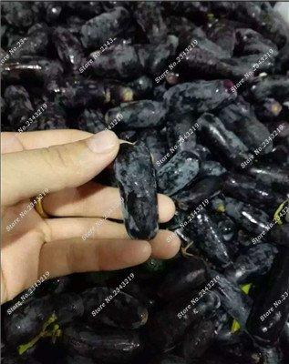 Bonsai Finger de pépins de raisin délicieux plantes en pot bio Maison et Jardin des plantes ornementales comestibles Can sain fruits semences 60 Pcs 12