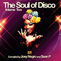 The Soul of Disco Vol 2 [12 inch Analog]