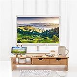 YYHDD Vielseitiger Bildschirmständer Monitorständer Riser Hölzerner Ergonomisch Monitor Bildschirm Ständer Mit Multifunktionssteckplatz und Handy Ständer für das Home-Office