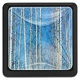 Abedul delgado con fondo de cielo azul Perillas de extracción de para gabinetes, armarios, puertas y cajones de muebles: se venden como un paquete de 3 perillas