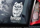 Sticker International Pomerania - Adesivo Auto - Cane Firmare Finestrino, Paraurti Adesivi Regalo - V003 - Bianco/Trasparente - Esterno Stampa, 195x100mm