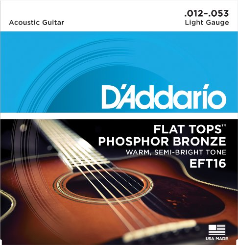 5. D'Addario EFT16 Flat Tops Phosphor Strings