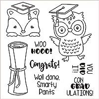 卒業を祝うDIYスクラップブッキング/poアルバム用の透明なクリアシリコンスタンプ/シール装飾的なクリアスタンプG92