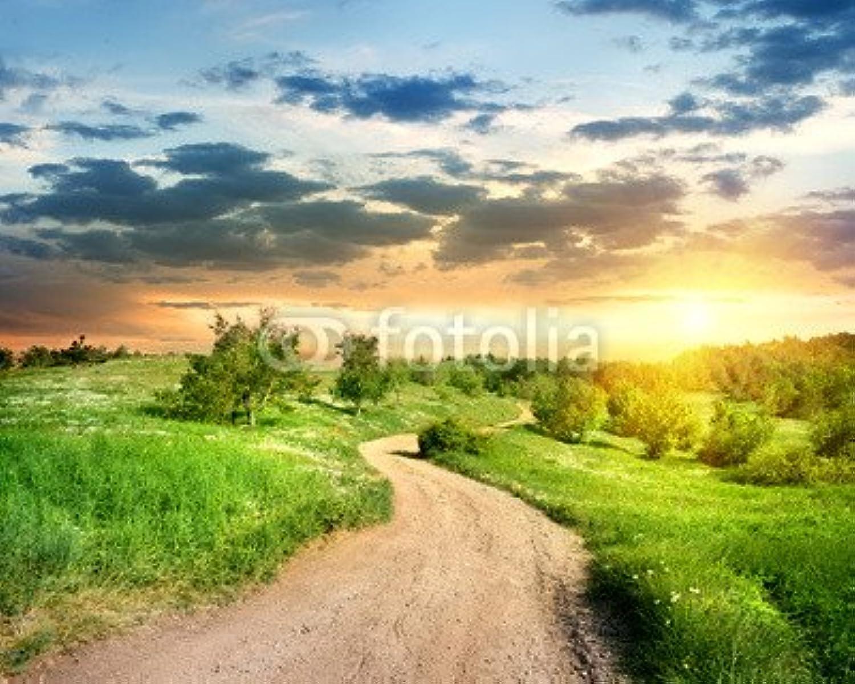 ganancia cero Road in the Evening (58000173), lona, 100 x 80 80 80 cm  a la venta