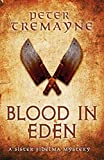 Blood in Eden (Sister Fidelma Mysteries Book 30): An unputdownable mystery of bloodshed and betrayal (Sister Fidelma Mysteries 30) (English Edition)