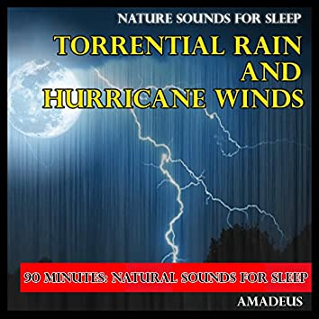 Nature Sounds for Sleep: Torrential Rains and Hurricane Winds