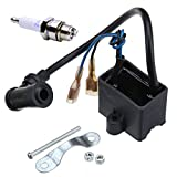 BH-Motor CDI Ignition Coil & Spark Plug for 50cc 66cc 80cc Engine Motor Motorized Bicycle Bike