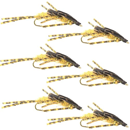 Double Bead Nymph Fly Fishing Flies Mikes Golden Stone with Barred Rubber Legs Stonefly Wet Fly 6 Flies Hook Size 6