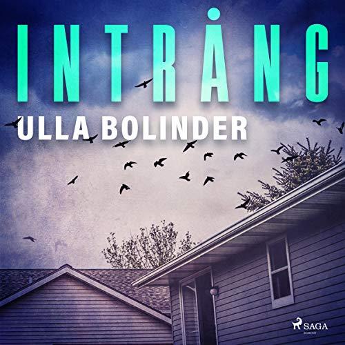 Intrång audiobook cover art