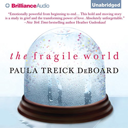The Fragile World audiobook cover art
