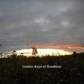 Golden Rays of Sunshine