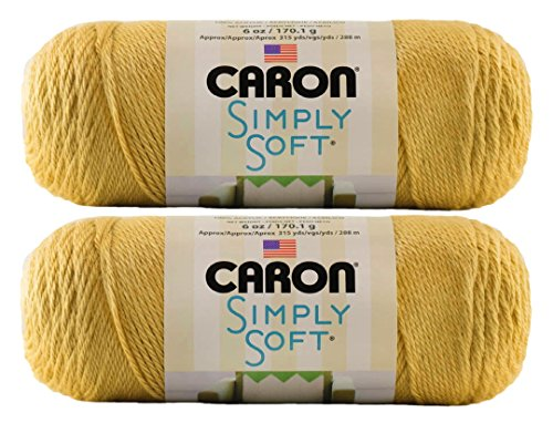 Caron Simply Soft Yarn Solids (2-Pack) (Victorian Rose)