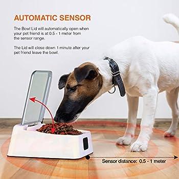 Mangeoire unique pour chiens et chats sur le marché avec ouverture et fermeture automatiques pour prévenir les odeurs, les odeurs et les ravageurs dans les aliments de votre animal de compagnie