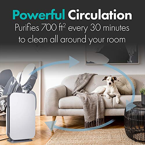 Alen FLEX Air Purifier, H13 True HEPA for Large Rooms up to 700 Sqft, SleepScore Validated, Dust, Mold, Pet Odors, White