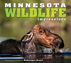 Minnesota Wildlife Impressions