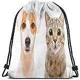 Mochilas con cordón Bolsas Deportivas Gym Cinch Bag, Retratos de Cerca del Perro Jack Russell Terrier y la Foto del Gato escocés Recto