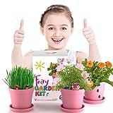 Fairy Garden Kit for Kids - Fairy Garden Kit w Fairy Garden Accessories - Flower Pots + Flower Seeds - My Fairy Garden w Fairy Figurine + Cute Stickers - Fairy Toys for Girls - Fairy House Crafts Girl