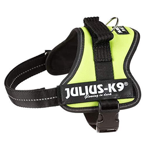 Julius-K9 162KW-MM K9-Powerharness, Mini - Mini XS, Kiwi