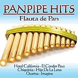 Panpipe Hits. Flauta de Pan