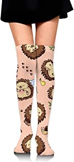 Dibujos animados Cute Hedgehogs Girls Calcetines hasta la rodilla Casual Running Sports Muslo Medias Custume Crazy Socks