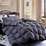LESNNCIER White Goose Down Comforter,1200 Thread Count 100% Cotton Fabric - Beautiful Pinch Pleat Design - Baffle Box Construction,800 Fill Power