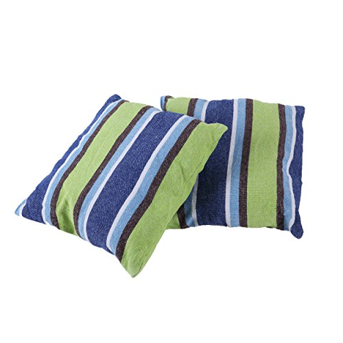 Inspired Home Living Lot de 2 coussins de 45 x 45 cm à rayures bleues et vertes Idéal pour hamacs, chaises hamacs, balançoires de terrasse – Intérieur et extérieur (45,7 x 45,7 cm)