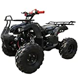 X-PRO 125cc ATV 4 Wheels Wheelers Quad 125 ATV Quads with LED Lights, Big 19'' Tires(Black)