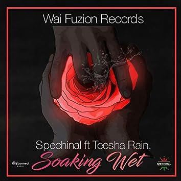 Soaking Wet (feat. Teesha Rain)