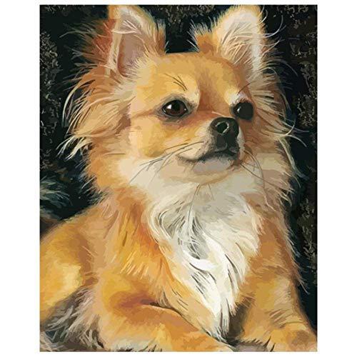 MYYDM Kit de Pintura al óleo de Bricolaje Pintura de Perro por números para Adultos niños con Pinceles y Pigmento acrílico 16 x 20 Pulgadas (sin Marco)