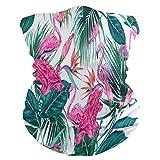 JUMPBEAR - Pasamontañas para el cuello y el cuello, multifuncional, transpirable, mágico bufanda tropical, flamenco, diadema para deportes al aire libre, polvo, viento, protección UV, para hombres y mujeres