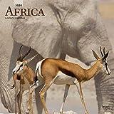Africa 2020 12 x 12 Inch Monthly Square Wall Calendar, Travel Africa Madagascar Ethiopia Johannesburg Cape Verde