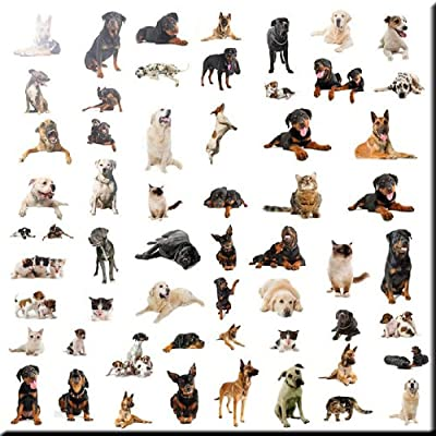 Rikki Knight 8 x 8 Boston Terrier Dog Silhouette by Moon Design Ceramic Art Tile