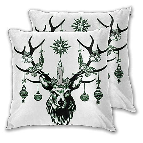 Throw Pillow Covers 2 Set