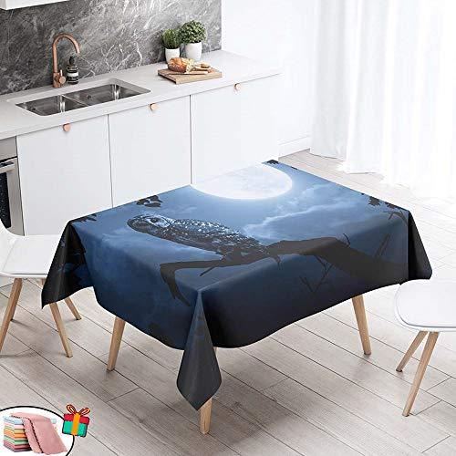 Morbuy Nappe Anti Tache Rectangulaire, Imperméable Étanche à l'huile 3D Imprimé Carrée Couverture de Table Lavable pour Ménage Cuisine Jardin Picnic Exterieur (Blanche Lune,140x240cm)