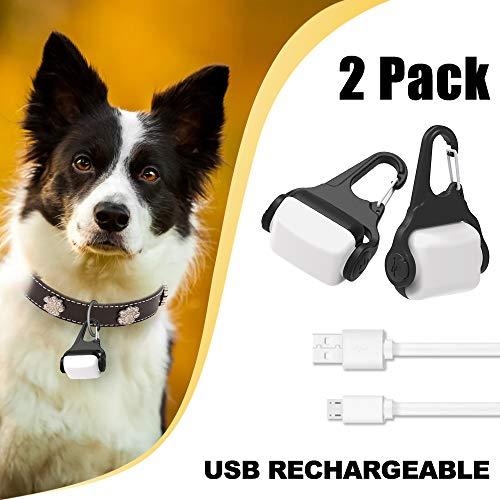 Derlights - Collar de Perro con luz LED, Recargable por USB, luz de Seguridad para la Oscuridad, IP65, Impermeable