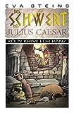 Das Schwert des Julius Caeser (Köln Krimi für Pänz)