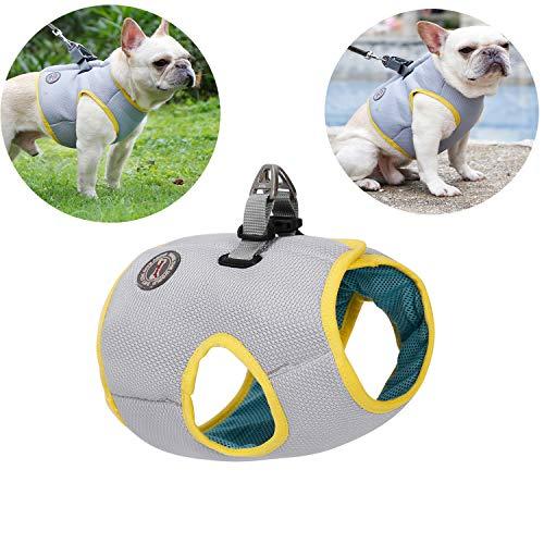 Tineer Pet Refrescante Arnés Malla de Verano Perro para Caminar Chaleco Fresco Arnés Ajustable para Perros pequeños/medianos/Grandes Correr Dentro o al Aire Libre, Caminar, Escalar montañas (XS)