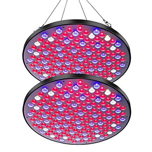 Corayer Reflector LED Pflanzenlampe, Pflanzenlicht 177 LEDs Plant Grow Lights für Zimmerpflanzen Vollspektrum Grow Lampe für Grow Tent, Blumen, Greenhouse, Pflanzenfabrik (2 Stück)