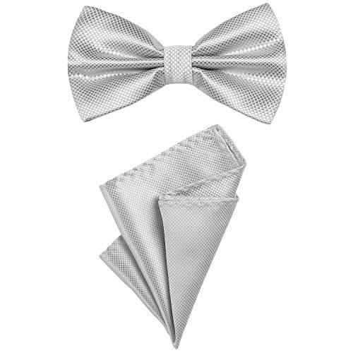 DonDon 2er Set Herren Fliege und Einstecktuch farblich passend gebunden und größenverstellbar silber