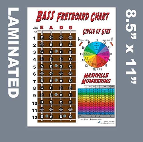 Laminated 4 String Bass Fretboard Notes Chart Nashville Number System & Circle of 5ths Easy Instructional Poster for Beginner for Notebook - A New Song Music 8.5 x 11