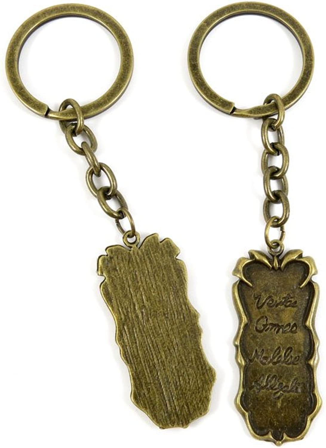 100 PCS Keyrings Keychains Key Ring Chains Tags Jewelry Findings Clasps Buckles Supplies C3NN8 Words Signs