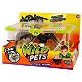 Wild Pets - Kk29002 - Terrarium + Araignée Exclusive
