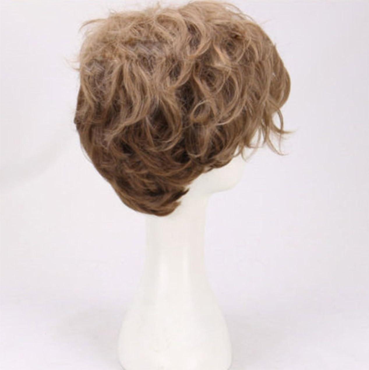 フルーティー教養がある研磨剤短い波ウィッグ合成男性/女性耐熱繊維髪100%高密度ヘアピース日常用