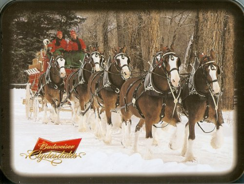 Playing Cards: Budweiser Clydesdale Horses ~ 2 Decks ~ Collectible Tin Box