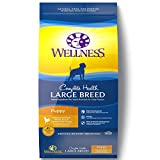 Wellness Complete Health Natural Dry Large Breed Puppy Food, Chicken,...